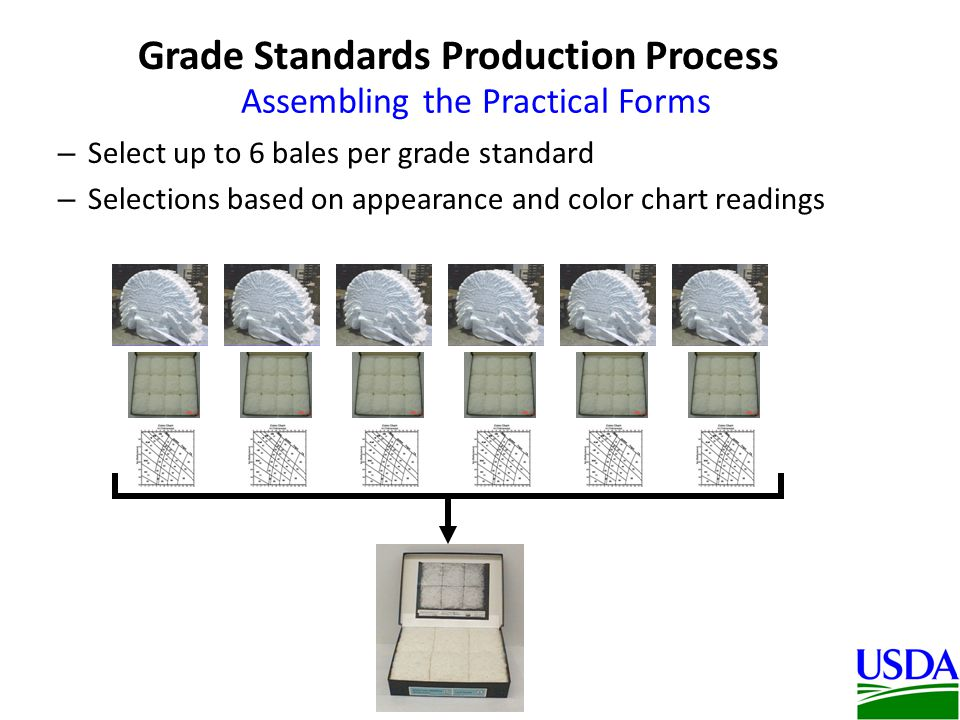 Assembling the Practical Forms – Select up to 6 bales per grade standard – Selections based on appearance and color chart readings Grade Standards Production Process