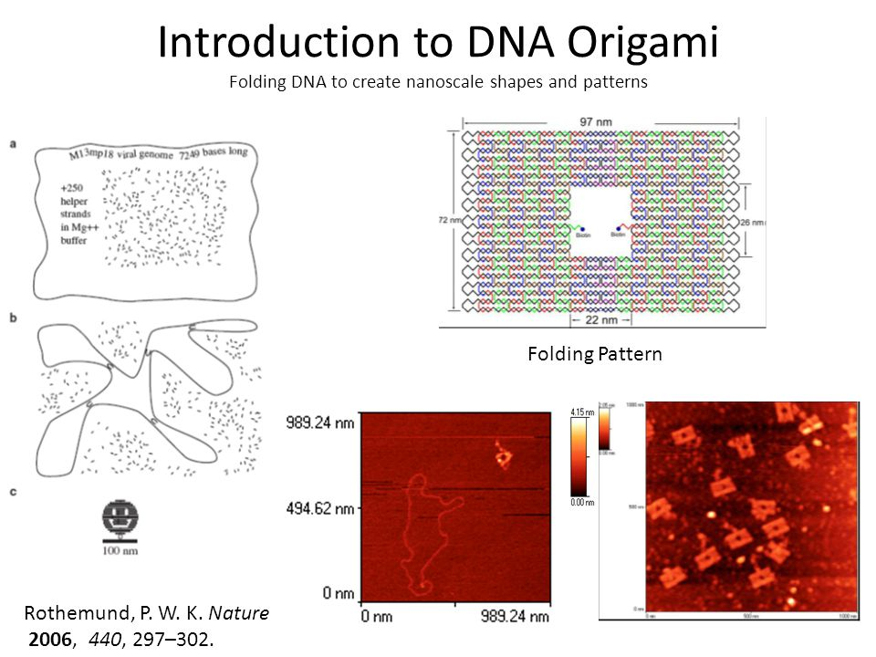 Introduction to DNA Origami Folding DNA to create nanoscale shapes and patterns Rothemund, P. W. K. Nature 2006, 440, 297–302. Folding Pattern