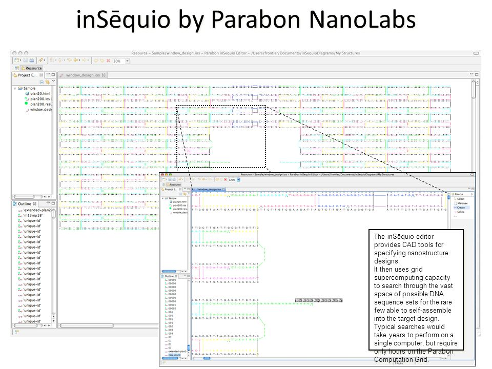 inSēquio by Parabon NanoLabs The inSēquio editor provides CAD tools for specifying nanostructure designs.