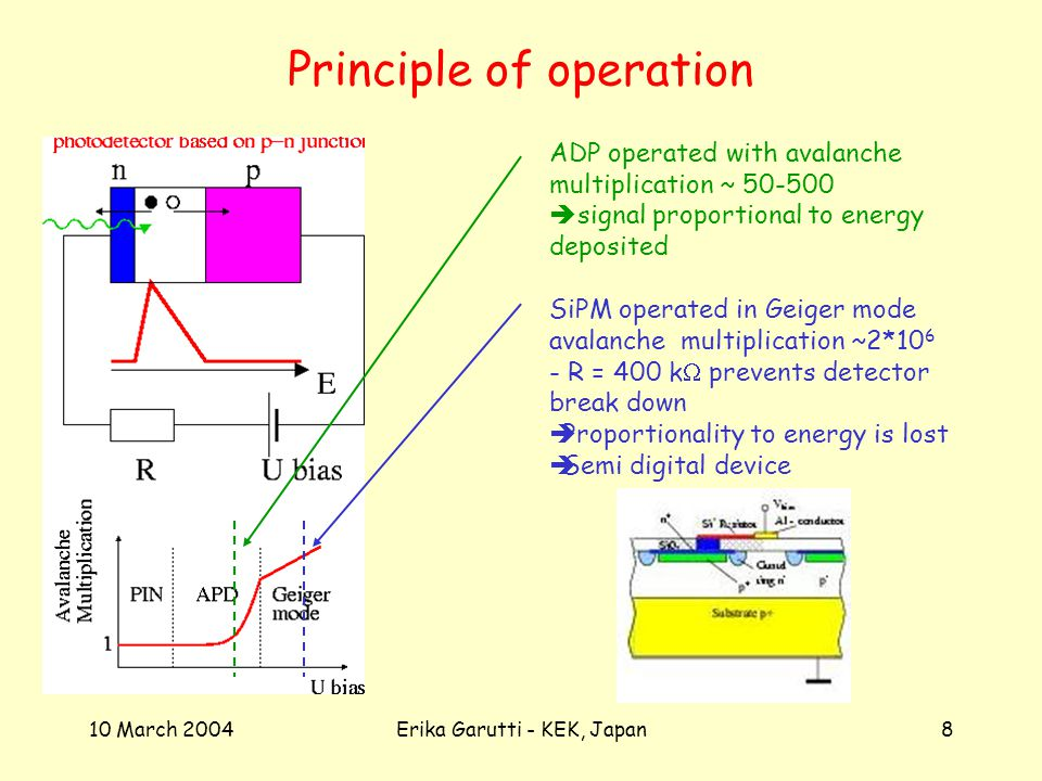 10 March 2004Erika Garutti - KEK, Japan8 Principle of operation ADP operated with avalanche multiplication ~ signal proportional to energy deposited SiPM operated in Geiger mode avalanche multiplication ~2* R = 400 k prevents detector break down Proportionality to energy is lost Semi digital device