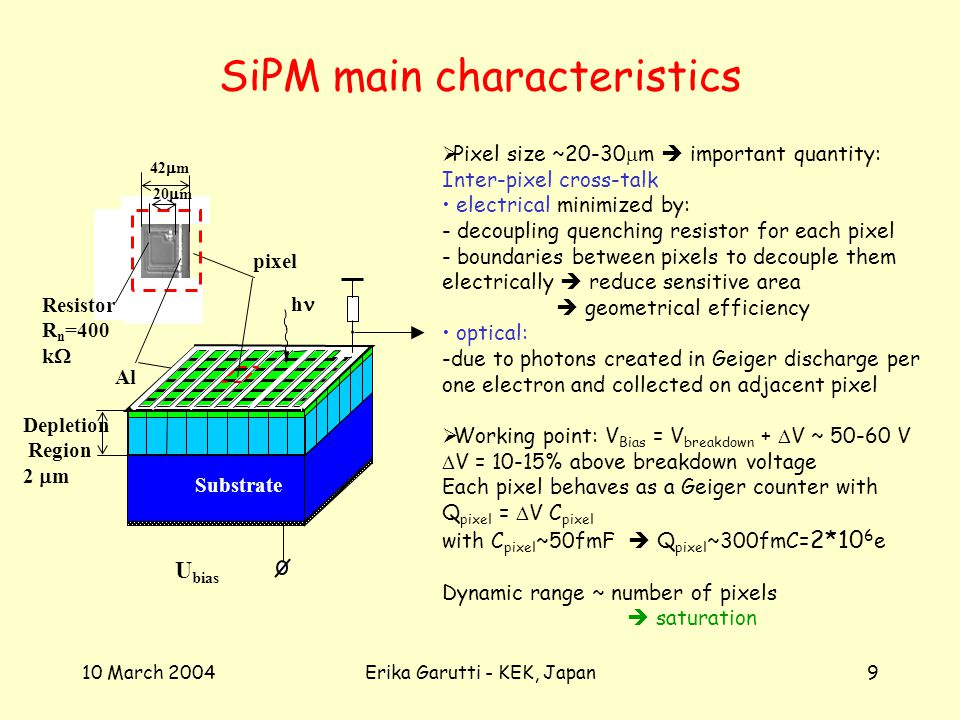 10 March 2004Erika Garutti - KEK, Japan9 SiPM main characteristics R 50 h pixel U bias Al Depletion Region 2 m Substrate Resistor R n =400 k 20 m 42 m Pixel size ~20-30 m important quantity: Inter-pixel cross-talk electrical minimized by: - decoupling quenching resistor for each pixel - boundaries between pixels to decouple them electrically reduce sensitive area geometrical efficiency optical: -due to photons created in Geiger discharge per one electron and collected on adjacent pixel Working point: V Bias = V breakdown + V ~ V V = 10-15% above breakdown voltage Each pixel behaves as a Geiger counter with Q pixel = V C pixel with C pixel ~50fmF Q pixel ~300fmC= 2*10 6 e Dynamic range ~ number of pixels saturation
