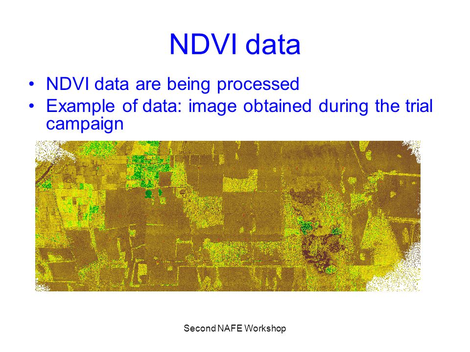 Second NAFE Workshop NDVI data NDVI data are being processed Example of data: image obtained during the trial campaign