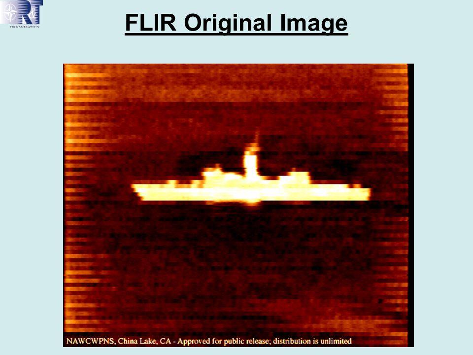 FLIR Original Image