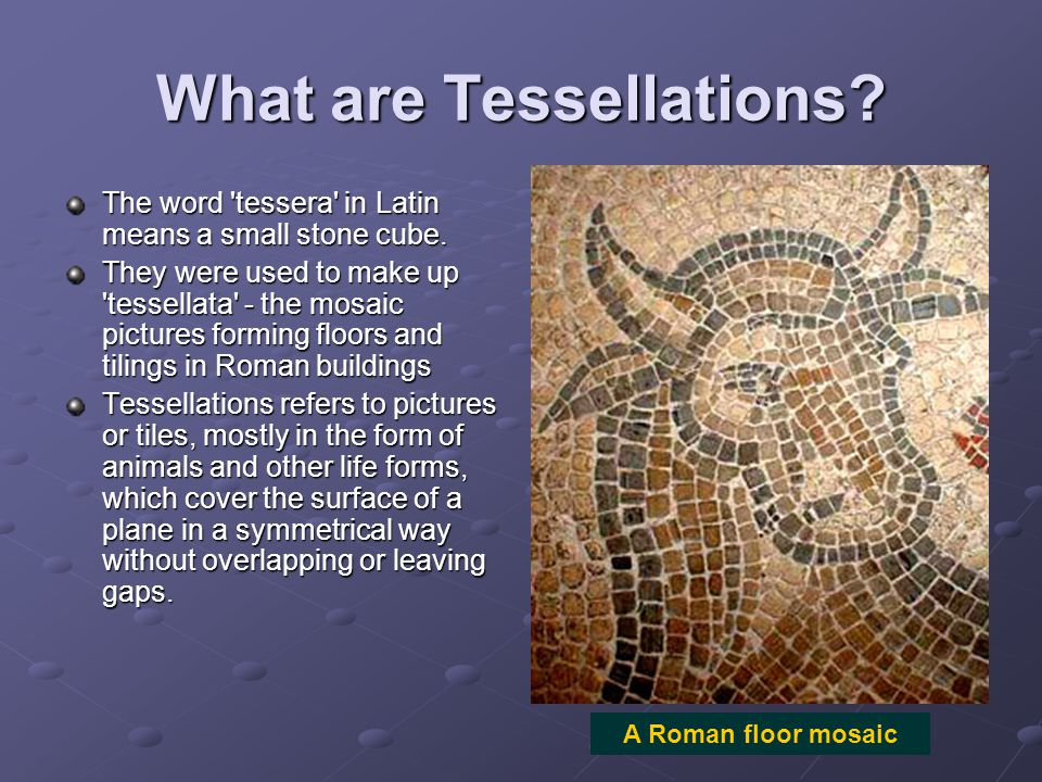 What are Tessellations? The word 'tessera' in Latin means a small stone cube. They were used to make up 'tessellata' - the mosaic pictures forming flo