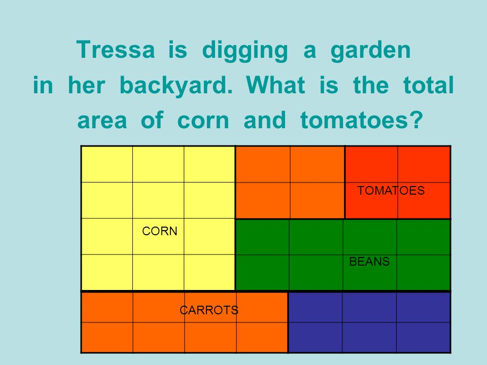 Tressa is digging a garden in her backyard. What is the total area of corn and tomatoes? CORN CARROTS BEANS TOMATOES