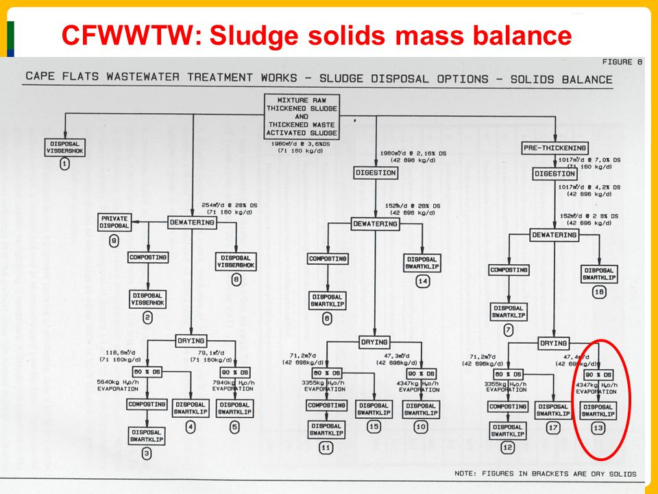 CFWWTW: Sludge solids mass balance