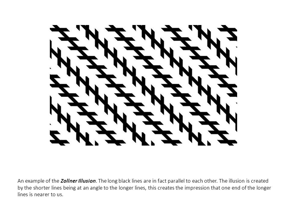 An example of the Zollner Illusion. The long black lines are in fact parallel to each other. The illusion is created by the shorter lines being at an