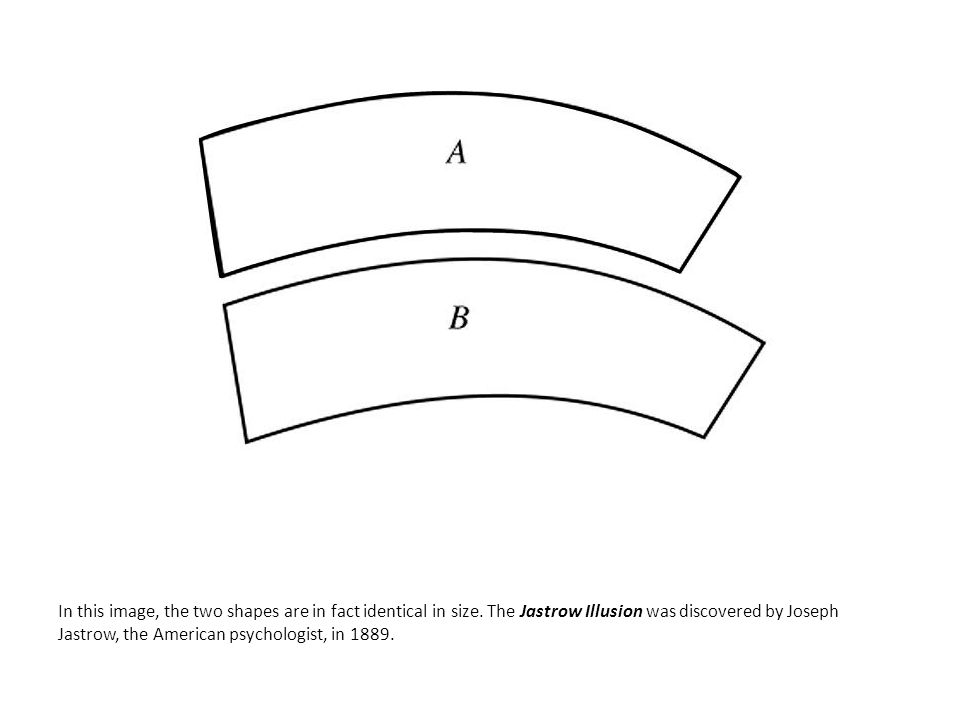 In this image, the two shapes are in fact identical in size. The Jastrow Illusion was discovered by Joseph Jastrow, the American psychologist, in 1889