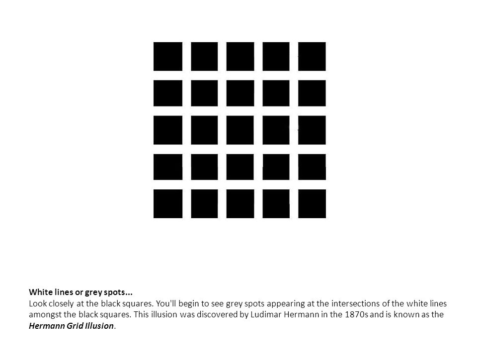 White lines or grey spots... Look closely at the black squares. You'll begin to see grey spots appearing at the intersections of the white lines among