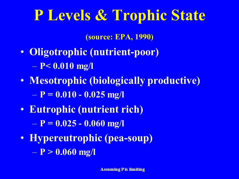 P Levels & Trophic State (source: EPA, 1990) Oligotrophic (nutrient-poor) –P< 0.010 mg/l Mesotrophic (biologically productive) –P = 0.010 - 0.025 mg/l