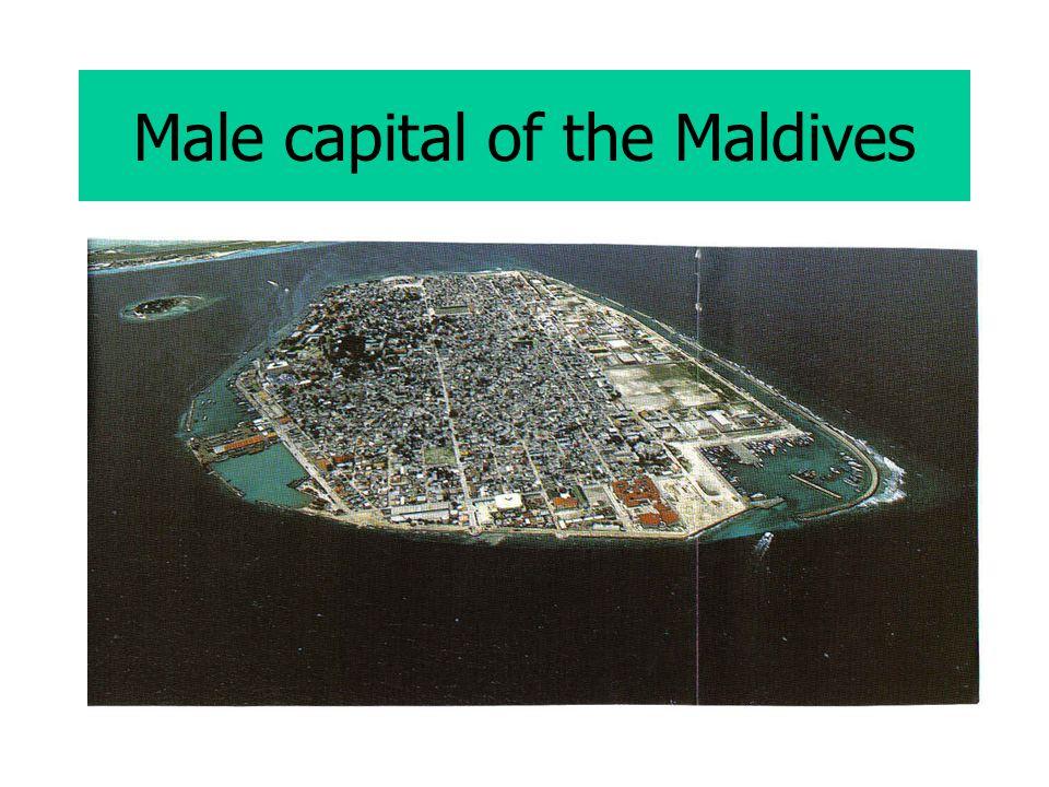 Male capital of the Maldives