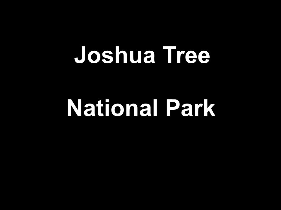 US National Parks מצגת: שולה מנדלסון Desert