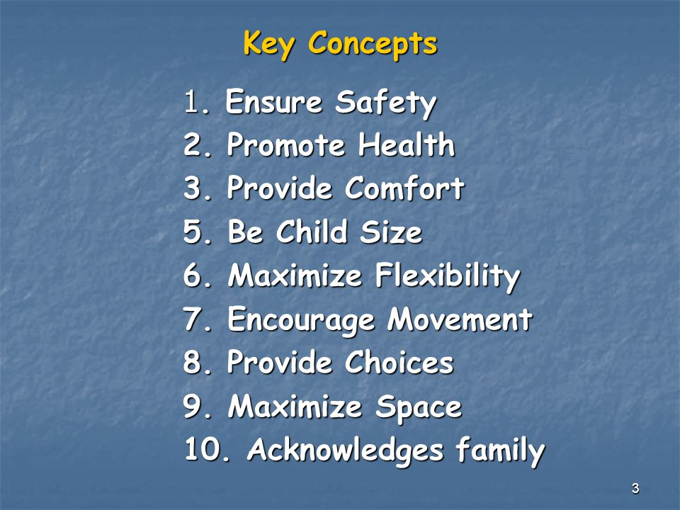 3 Key Concepts 1. Ensure Safety 2. Promote Health 3.