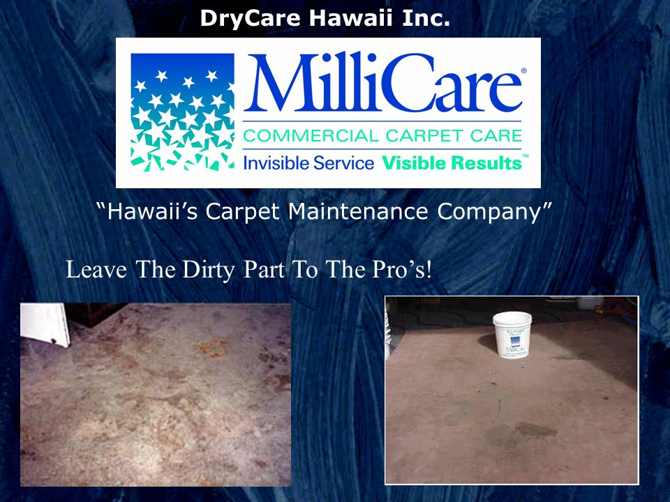 Leave The Dirty Part To The Pros! DryCare Hawaii Inc. Hawaiis Carpet Maintenance Company