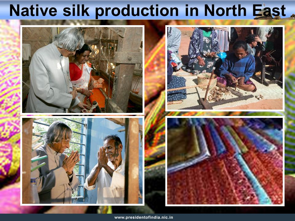 Native silk production in North East