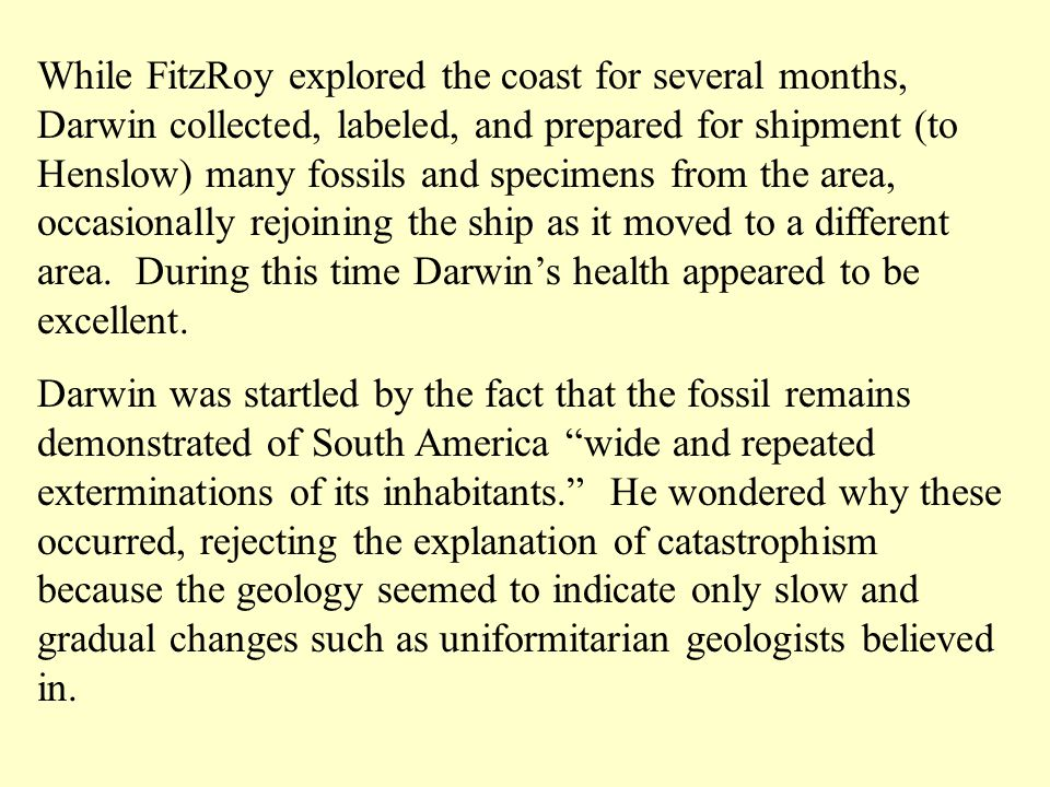 While FitzRoy explored the coast for several months, Darwin collected, labeled, and prepared for shipment (to Henslow) many fossils and specimens from the area, occasionally rejoining the ship as it moved to a different area.