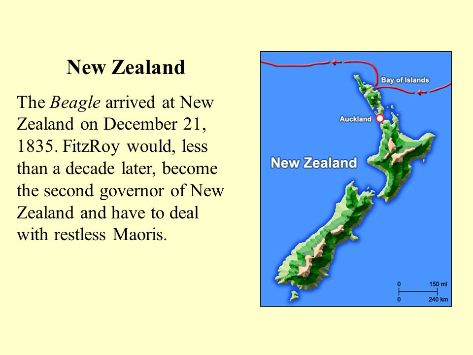 New Zealand The Beagle arrived at New Zealand on December 21, 1835.
