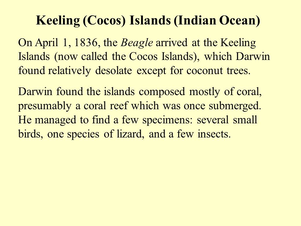 Keeling (Cocos) Islands (Indian Ocean) On April 1, 1836, the Beagle arrived at the Keeling Islands (now called the Cocos Islands), which Darwin found relatively desolate except for coconut trees.