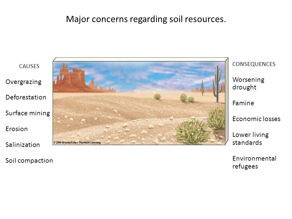 Causes CONSEQUENCES Worsening drought Famine Economic losses Lower living standards Environmental refugees CAUSES Overgrazing Deforestation Surface mining Erosion Salinization Soil compaction Major concerns regarding soil resources.