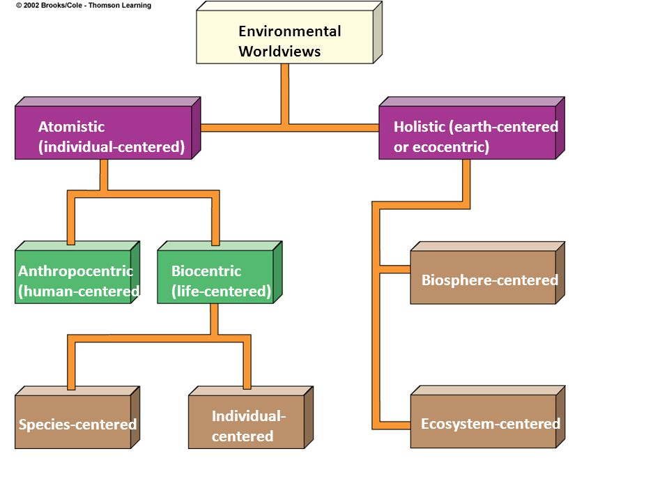 Environmental Worldviews Atomistic (individual-centered) Holistic (earth-centered or ecocentric) Anthropocentric (human-centered) Biocentric (life-centered) Biosphere-centered Species-centered Individual- centered Ecosystem-centered