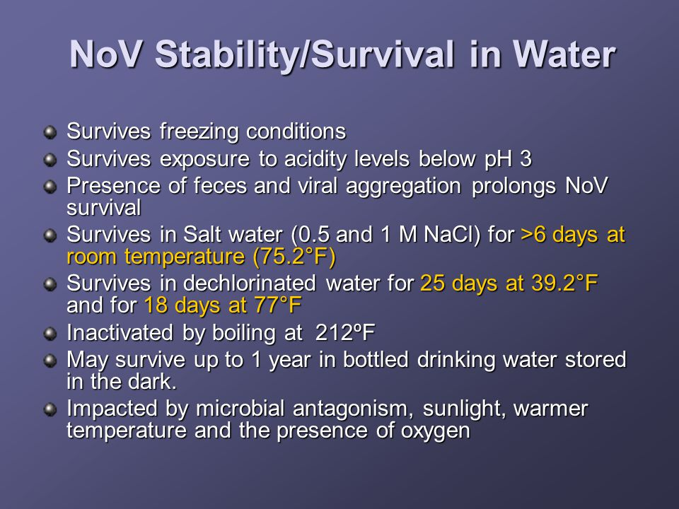 NoV Stability/Survival in Water Survives freezing conditions Survives exposure to acidity levels below pH 3 Presence of feces and viral aggregation prolongs NoV survival Survives in Salt water (0.5 and 1 M NaCl) for >6 days at room temperature (75.2°F) Survives in dechlorinated water for 25 days at 39.2°F and for 18 days at 77°F Inactivated by boiling at 212ºF May survive up to 1 year in bottled drinking water stored in the dark.