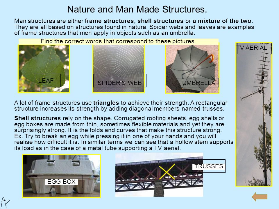 Nature and Man Made Structures. Basic Structural Principles. Basic Structural Systems. Materials and Structures. Frame Structures Evaluation. 3- Struc