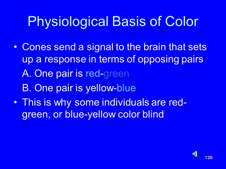 135 Physiological Basis of Color Cones send a signal to the brain that sets up a response in terms of opposing pairs A. One pair is red-green B. One p