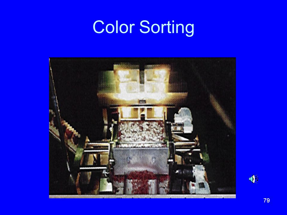 79 Color Sorting
