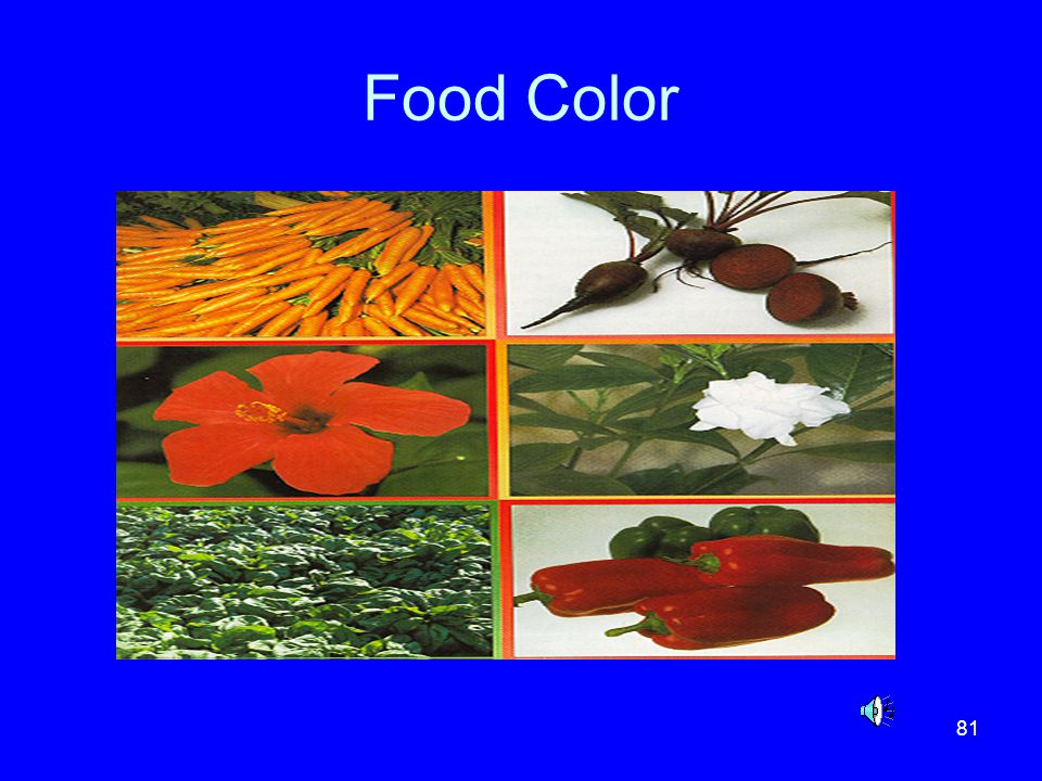 81 Food Color