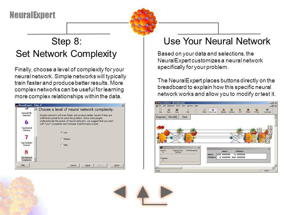 Based on your data and selections, the NeuralExpert customizes a neural network specifically for your problem. The NeuralExpert places buttons directl