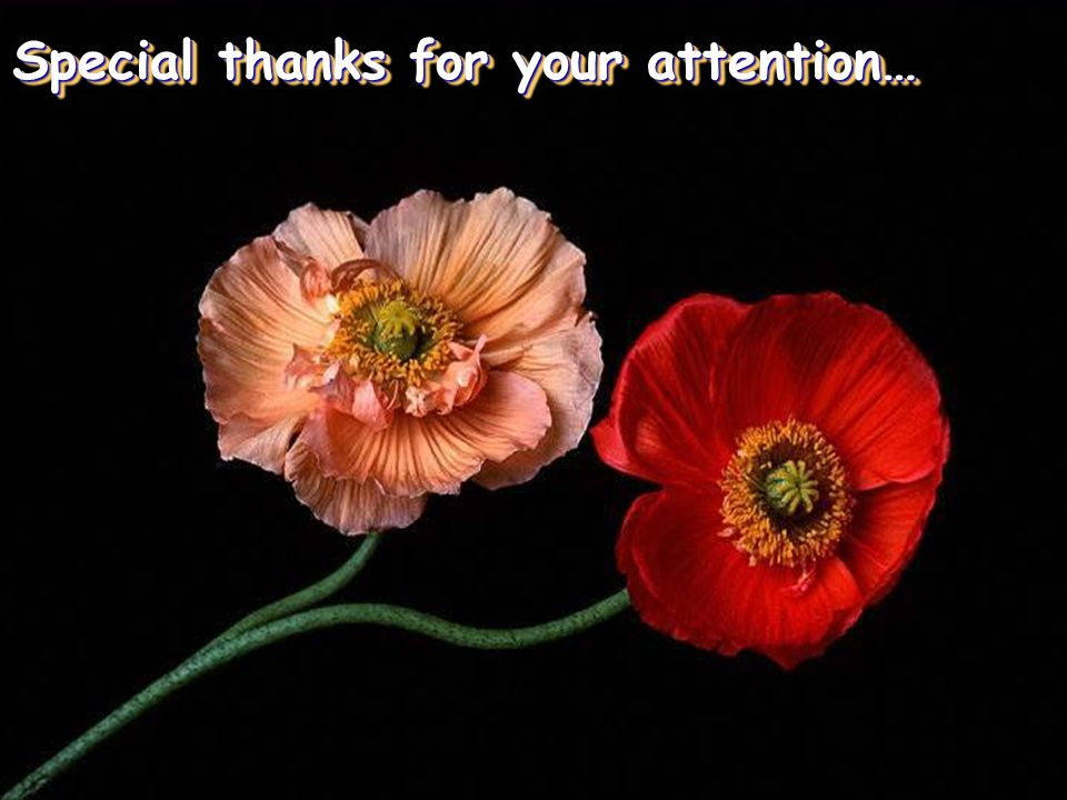 Special thanks for your attention…