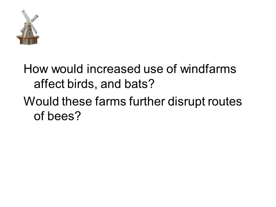 How would increased use of windfarms affect birds, and bats.