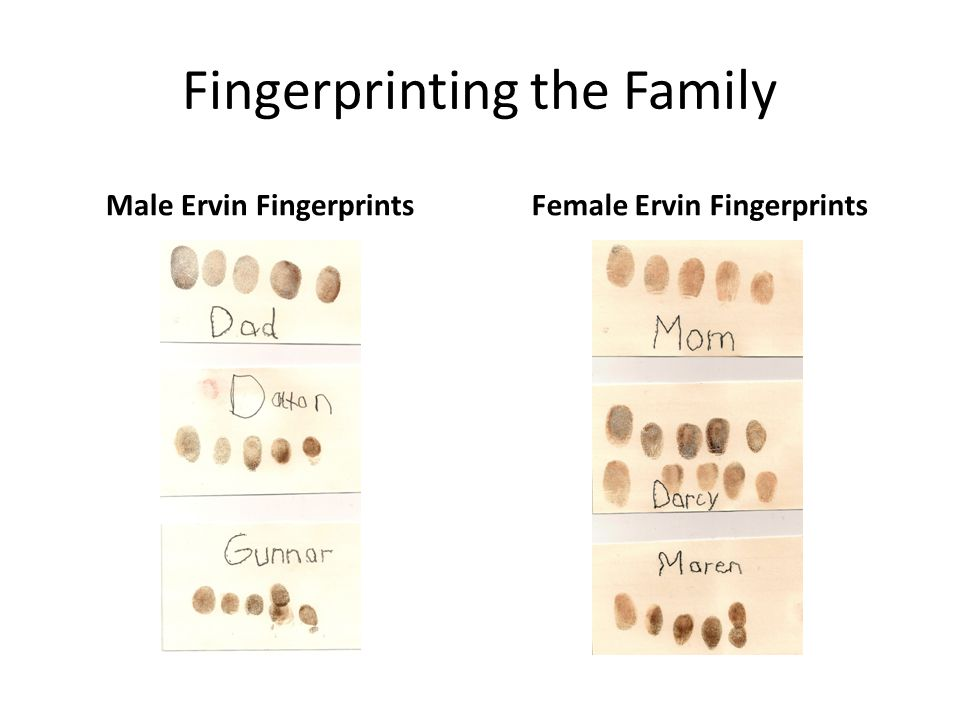 Used to look at fingerprints