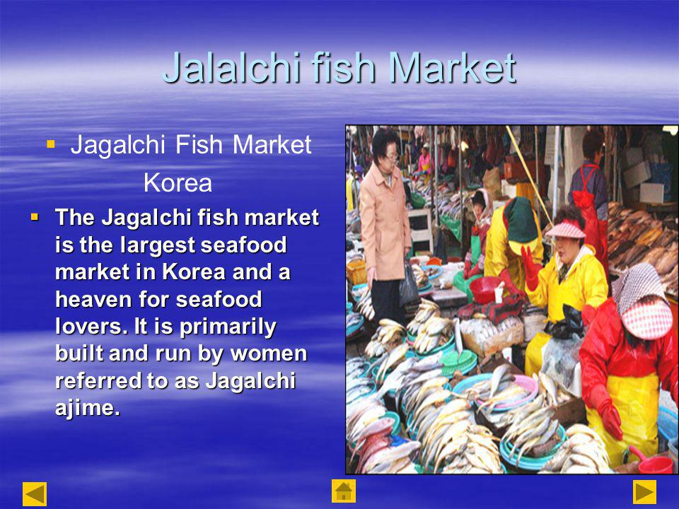 Jalalchi fish Market Jagalchi Fish Market Korea The Jagalchi fish market is the largest seafood market in Korea and a heaven for seafood lovers.