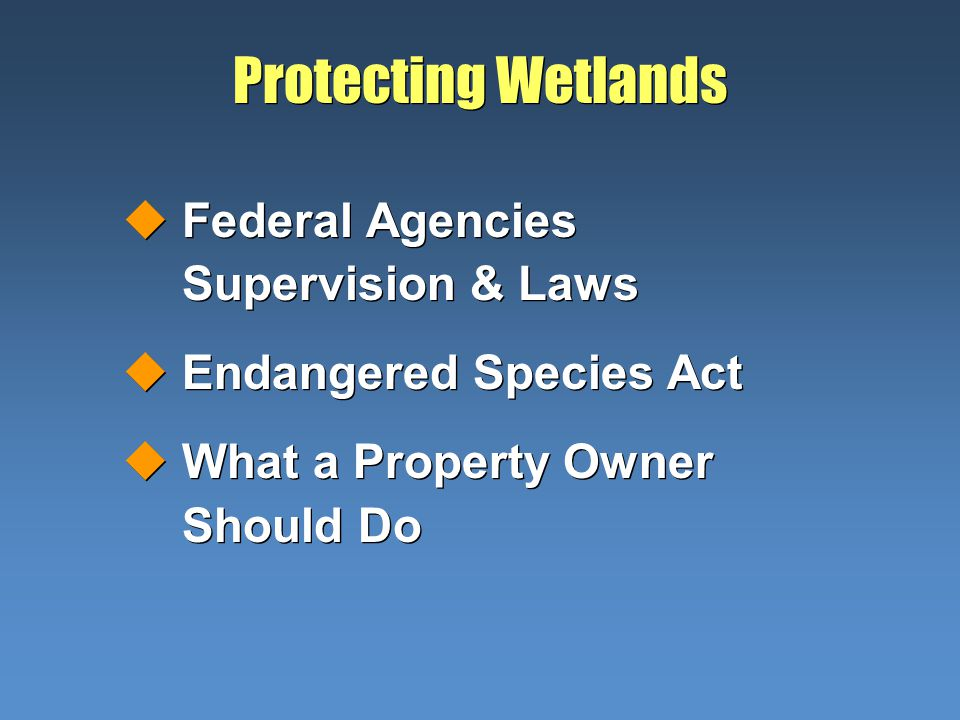 Protecting Wetlands uFederal Agencies Supervision & Laws uEndangered Species Act uWhat a Property Owner Should Do uFederal Agencies Supervision & Laws uEndangered Species Act uWhat a Property Owner Should Do
