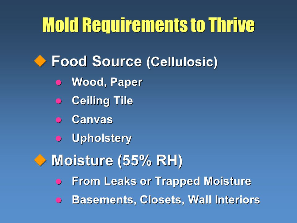 Mold Requirements to Thrive uFood Source (Cellulosic) l Wood, Paper l Ceiling Tile l Canvas l Upholstery uMoisture (55% RH) l From Leaks or Trapped Moisture l Basements, Closets, Wall Interiors uFood Source (Cellulosic) l Wood, Paper l Ceiling Tile l Canvas l Upholstery uMoisture (55% RH) l From Leaks or Trapped Moisture l Basements, Closets, Wall Interiors
