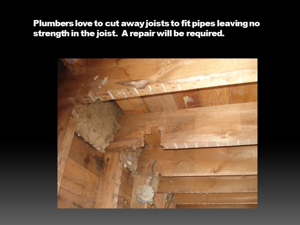 Plumbers love to cut away joists to fit pipes leaving no strength in the joist. A repair will be required.