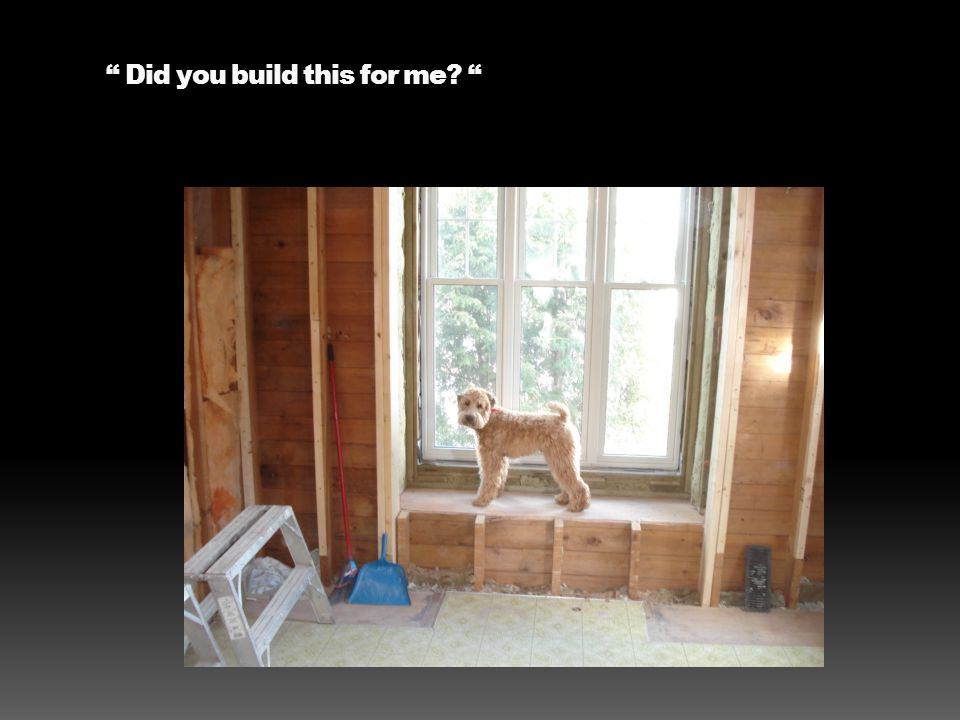 Did you build this for me?
