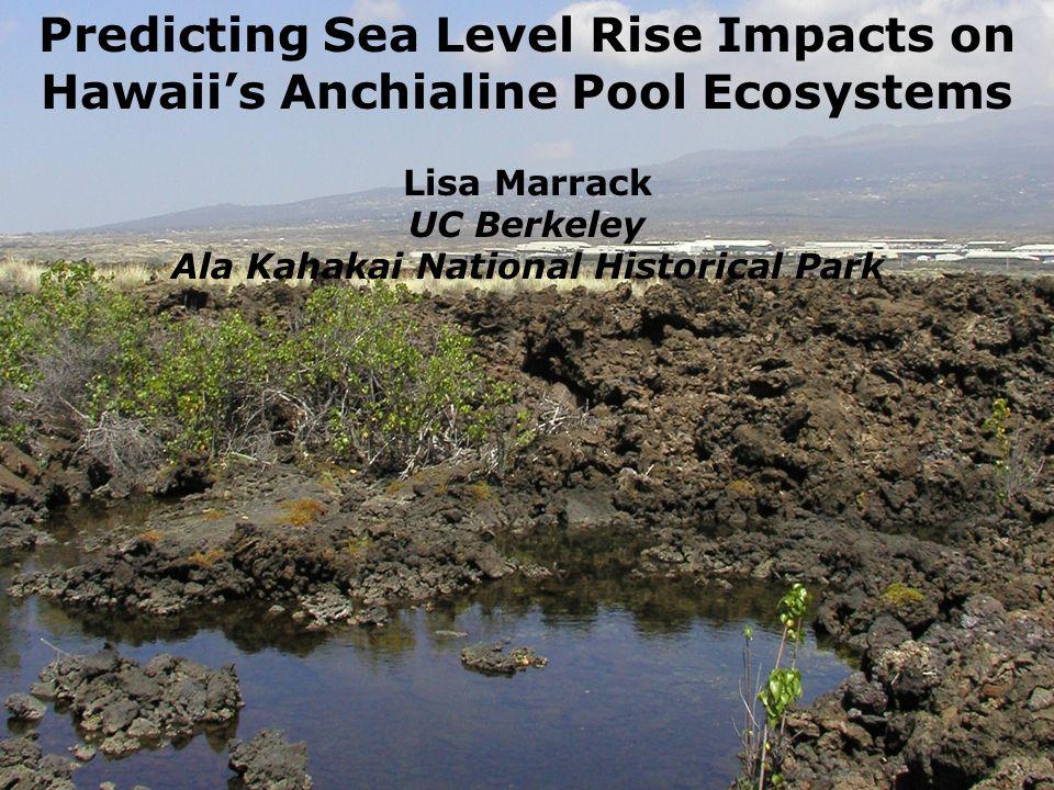 Predicting Sea Level Rise Impacts on Hawaiis Anchialine Pool Ecosystems Lisa Marrack UC Berkeley Ala Kahakai National Historical Park