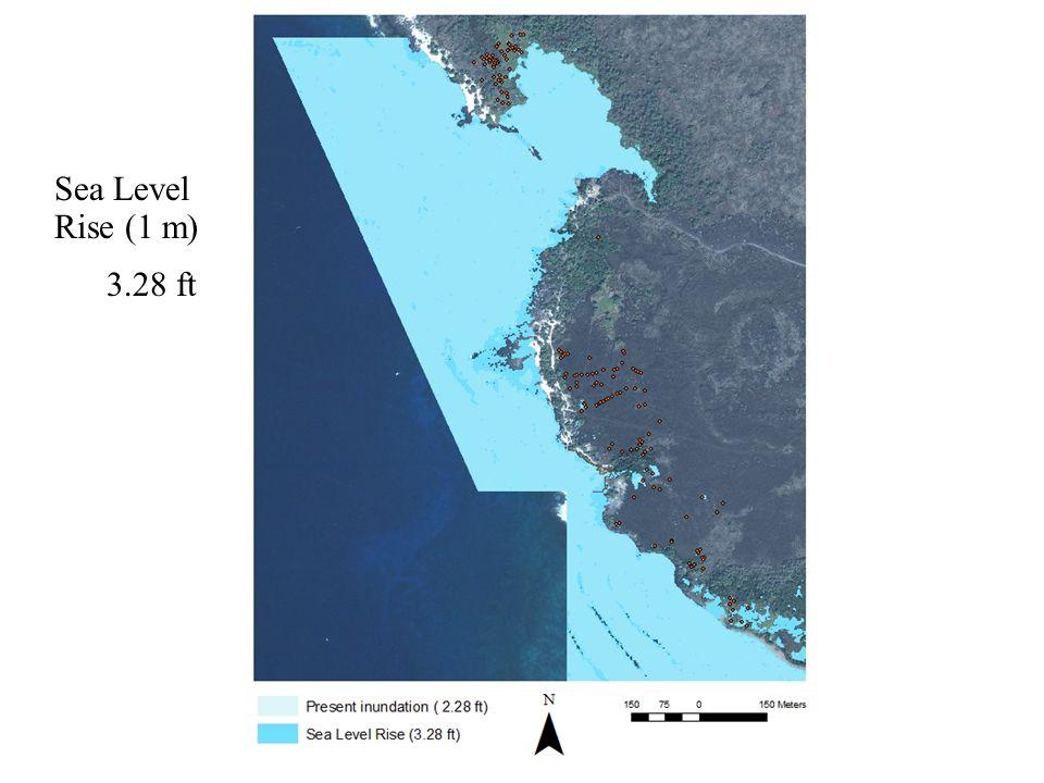 Sea Level Rise (1 m) 3.28 ft