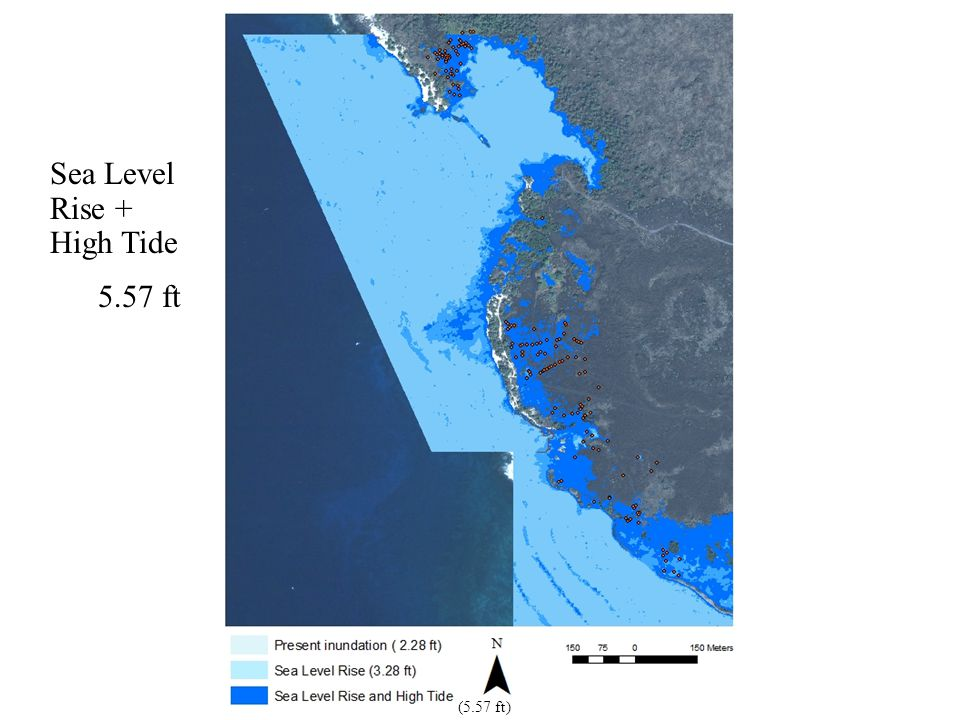 (5.57 ft) Sea Level Rise + High Tide 5.57 ft