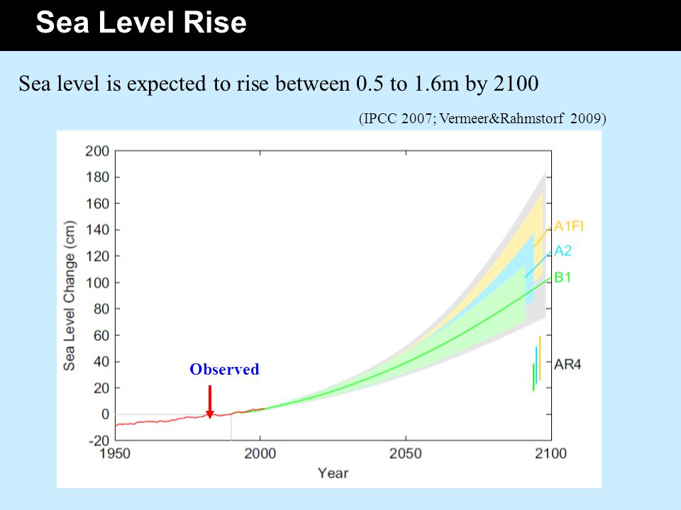 Sea Level Rise Sea level is expected to rise between 0.5 to 1.6m by 2100 (IPCC 2007; Vermeer&Rahmstorf 2009) Observed