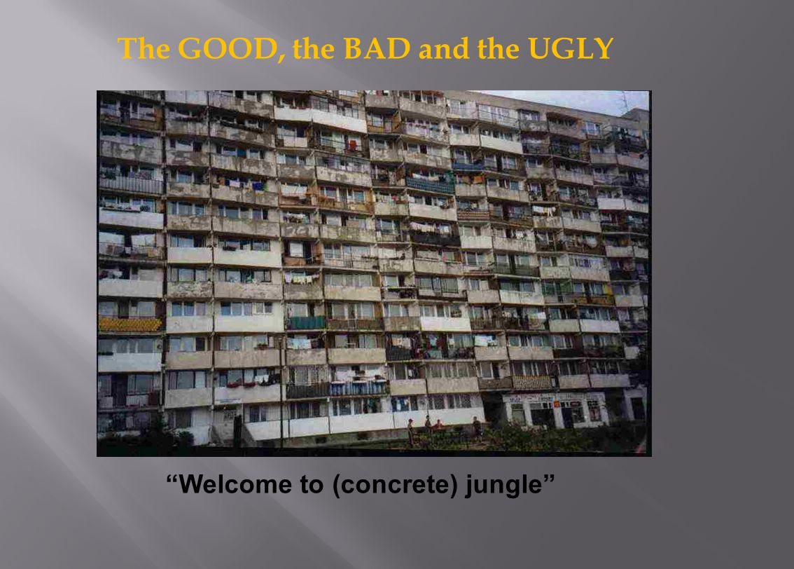 Welcome to (concrete) jungle The GOOD, the BAD and the UGLY