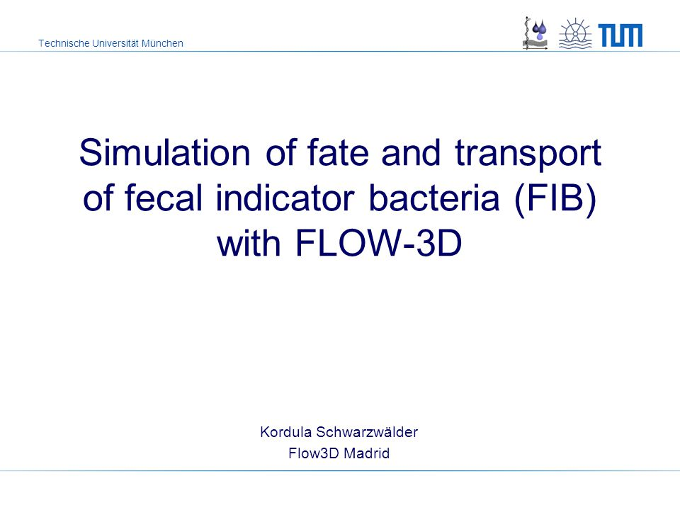 Technische Universität München Kordula Schwarzwälder Flow3D Madrid Simulation of fate and transport of fecal indicator bacteria (FIB) with FLOW-3D