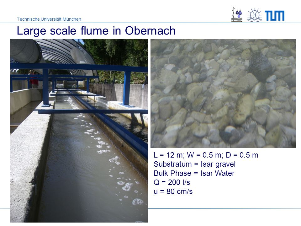 Technische Universität München L = 12 m; W = 0.5 m; D = 0.5 m Substratum = Isar gravel Bulk Phase = Isar Water Q = 200 l/s u = 80 cm/s 2.3 cm × 2.3 cm