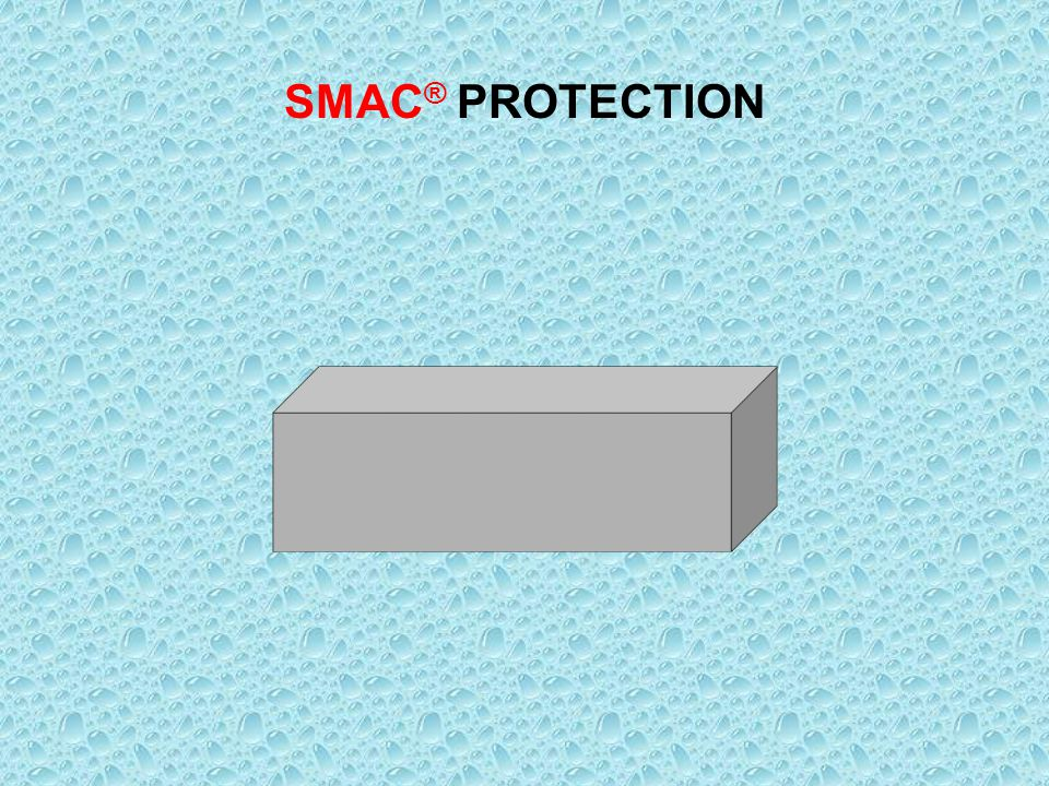 ACTION OF NANO PARTICLES SMAC ® PROTECTION