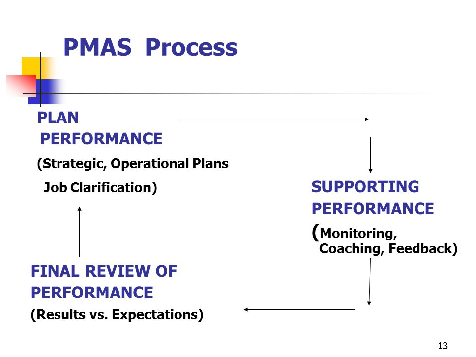 13 PMAS Process PLAN PERFORMANCE (Strategic, Operational Plans Job Clarification) SUPPORTING PERFORMANCE ( Monitoring, Coaching, Feedback) FINAL REVIEW OF PERFORMANCE (Results vs.