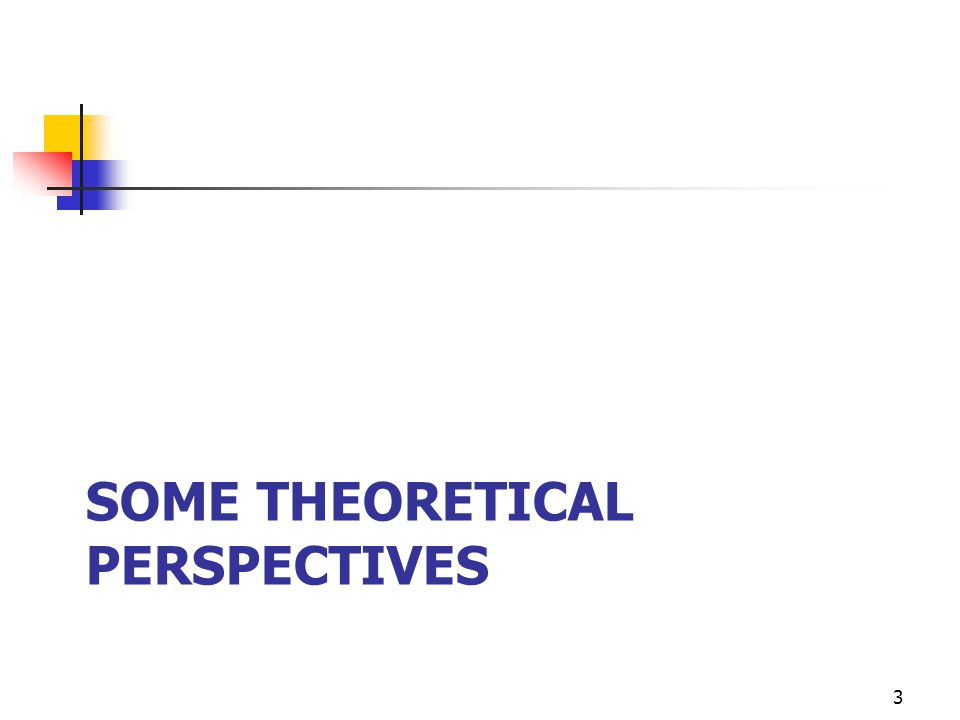 SOME THEORETICAL PERSPECTIVES 3