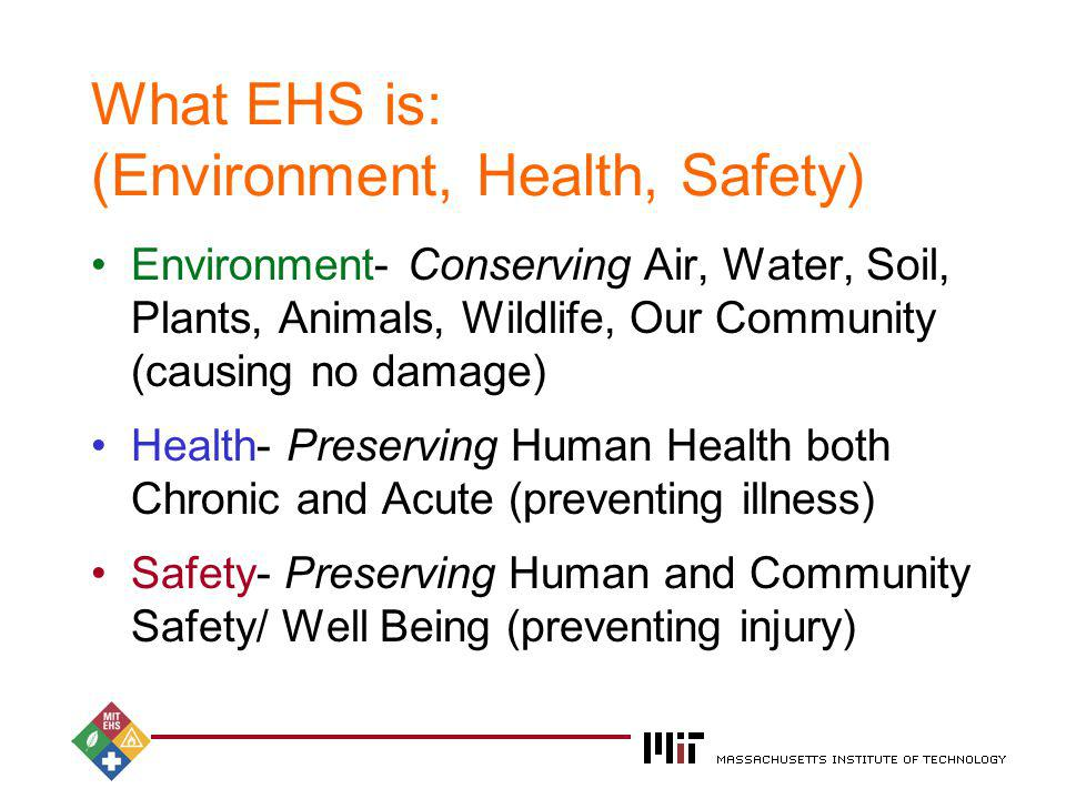 2004 What EHS is: (Environment, Health, Safety) Environment- Conserving Air, Water, Soil, Plants, Animals, Wildlife, Our Community (causing no damage)
