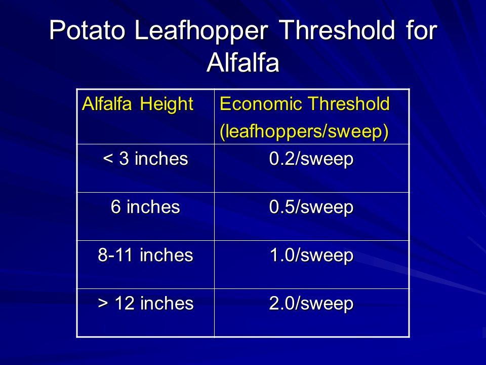 Potato Leafhopper Threshold for Alfalfa Alfalfa Height Economic Threshold (leafhoppers/sweep) < 3 inches 0.2/sweep 6 inches 0.5/sweep 8-11 inches 1.0/sweep > 12 inches 2.0/sweep